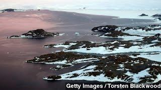 Melting Ice Shelves Drive Rapid Antarctic Sea Level Rise