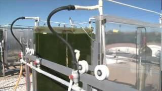 ASU Researchers Convert Algae into Fuel