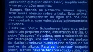 Salvatore de Salvo (Cientista pro NS) - Viktor Schauberger