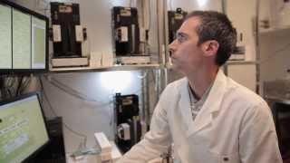 UTS C3: Algal Biofuels Research Program