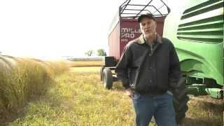 Optimizing Harvest of Perennial Grasses for Biofuel