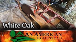 Sawing White Oak and Solar Kiln Build