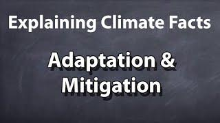 Explaining Climate Facts - 3/3 - Adaptation & Mitigation
