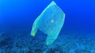 Earth Day 2018: Ending Plastic Pollution in the Oceans, Land & Our Bodies