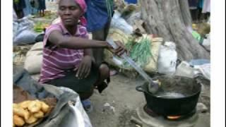 Haiti Clean Stoves Program- Trees, Water & People