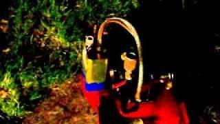 Geet Running Engine Water, Oil & Gas Mix Run Sept 23 2010