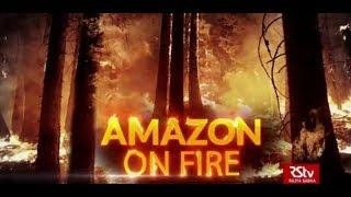In Depth - Amazon on Fire