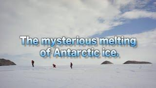 [ScienceNews2014]The mysterious melting of Antarctic ice