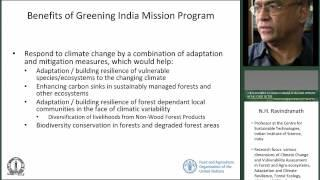 Costs and benefits of the Green India Mission for mitigation