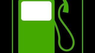 Energy Crisis: Is Algae Fuel the Solution?