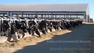 Caterpillar Powers Idaho Dairy with Renewable Biogas Energy