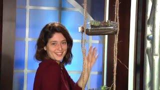 DIY - Vertical Hanging Garden with plastic bottles - Living Greener