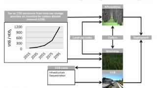 Investigating afforestation and bioenergy CCS as climate change mitigation strategiess