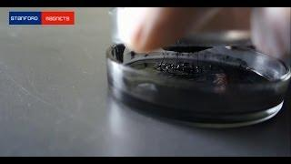 How to Make Ferro Fluid at Home - Stanford Magnets
