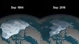 NASA Releases Time-Lapse Video Of Depleting Arctic Ice Cap
