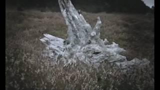 Secrets Of The Dead (S01E01-E02) Catastophe! (2001)