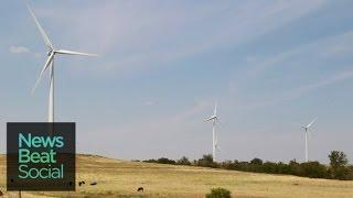 Google to Switch to 100 Percent Wind and Solar Power by 2017