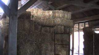 Timber frame straw bale house tour (during construction)