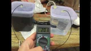 DIY Microbial Fuel Cell (easy)