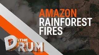 Amazon wildfires an international crisis | The Drum