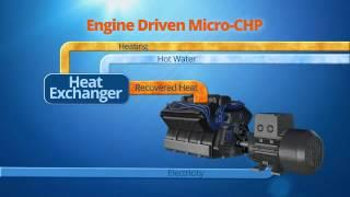 Energy Solutions Center - Micro CHP