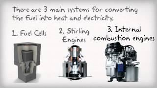 Micro CHP boiler Information | The Renewable Energy Hub