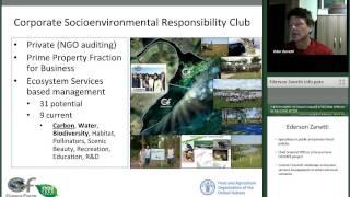 Climate Change & Management of Carbon Ecosystem Services within a Green Economy Context   CO2FREE