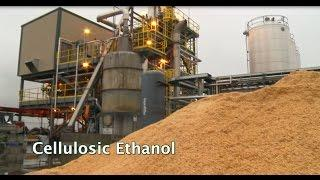 Renewable Biofuels and Biochemicals: Cellulosic Ethanol