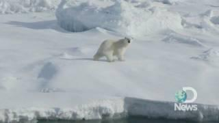 Arctic Melt Caught on Video