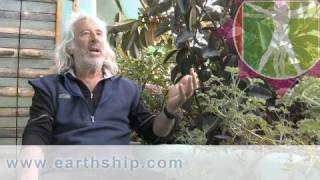 Earthship Codes, Permits, Regulations and Laws