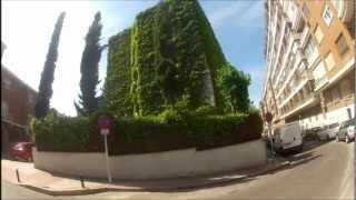 Jardín Vertical Natural en el Centro de Madrid