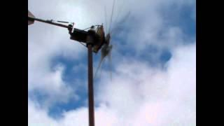Hawt 600 pma magnets 3 phase green energy blade wind turbine vawt solar 110.wmv