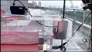 Wind tunnel with wave generator