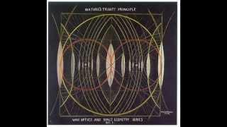 Walter Russell Vortex Video: The Cosmology of Twin Opposing Electro-Magnetic Vortices