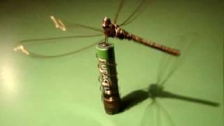 Homopolar Dragonfly