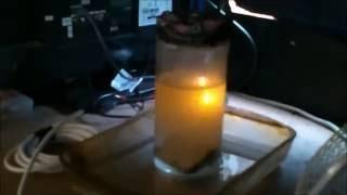 Nuclear Fusion Reaction using Plasma Electrolysis
