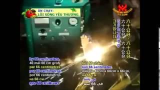 HHO Top fuel technologies