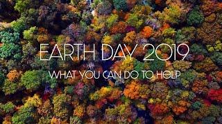 Earth Day 2019 | What You Can Do To Help