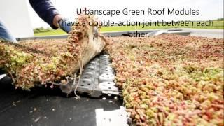 Urbanscape DIY - How to install a Green Roof