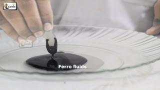 Making Magnetic FerroFluid | How To Make Ferrofluid at home | Science Experiment for kids | elearnin