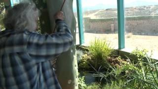 Fishing in the Phoenix Earthship