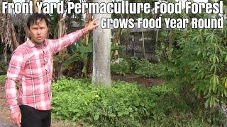 Front Yard Permaculture Food Forest Grows Food Year Round Tour