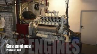 Combined Heat & Power - how it works CHP with MAN engines from CWD group