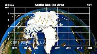 How fast is Arctic Sea ice Melting ? Check This Out