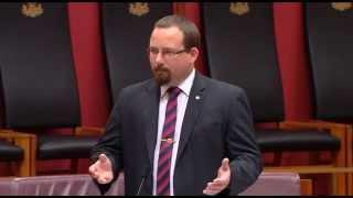 Senator Ricky Muir | Renewable Energy Amendment Bill - Woody Biomass Statement | 17-Jun-2015