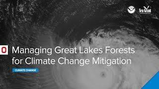 Climate Webinar: Managing Great Lakes Forests for Climate Change Mitigation