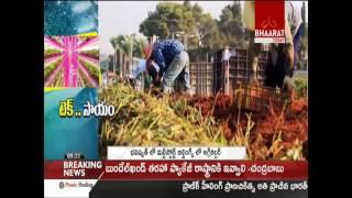 Vertical Farming May Be The Way To Go For India || Bhaarat Today