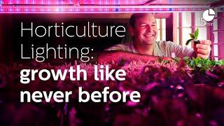 Horticulture LED lighting - Part 1 Plants and Lighting