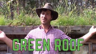 HOW TO  BUILD A GREEN ROOF!
