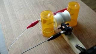 Pulse motor with magnetic reed switch